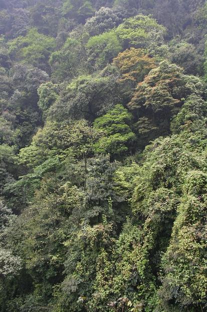 china_2007_004