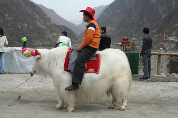 china_2007_024