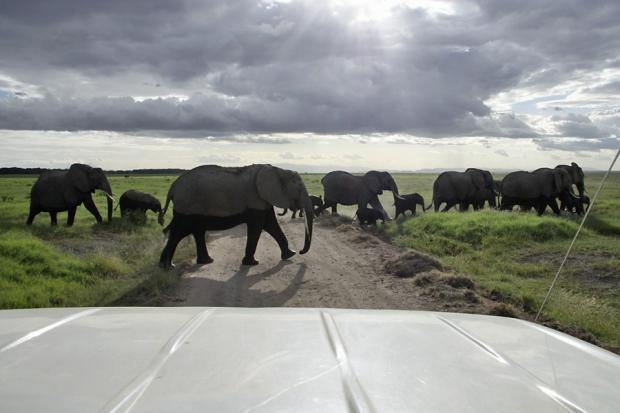 kenya_web_2012_012
