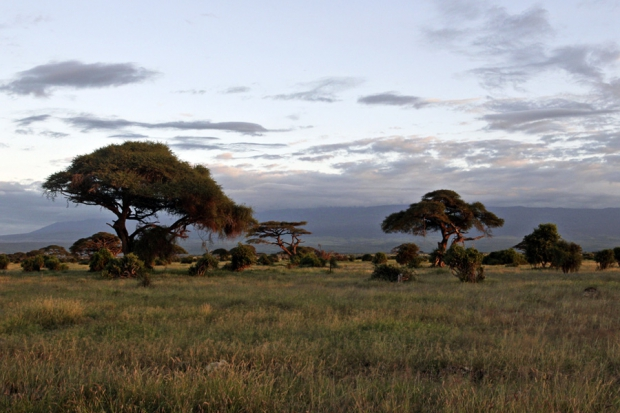 kenya_web_2012_015