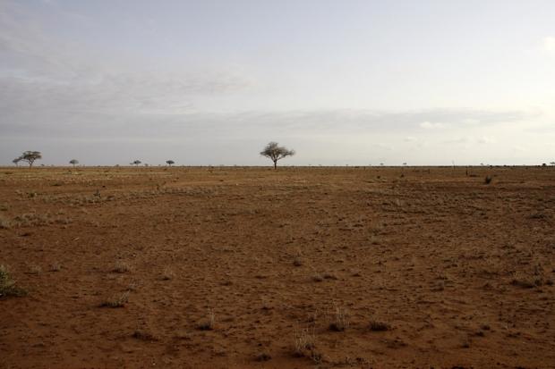kenya_web_2012_039