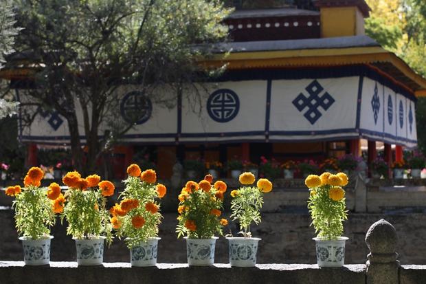 tibet_2013_026